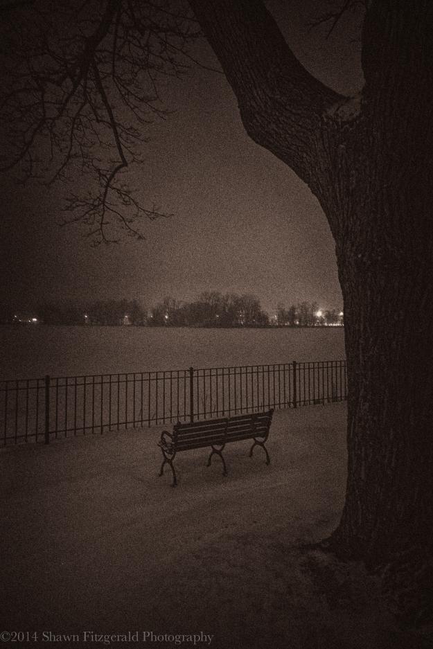 Winter2013Melrose-1