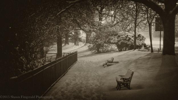 Winter012415-2