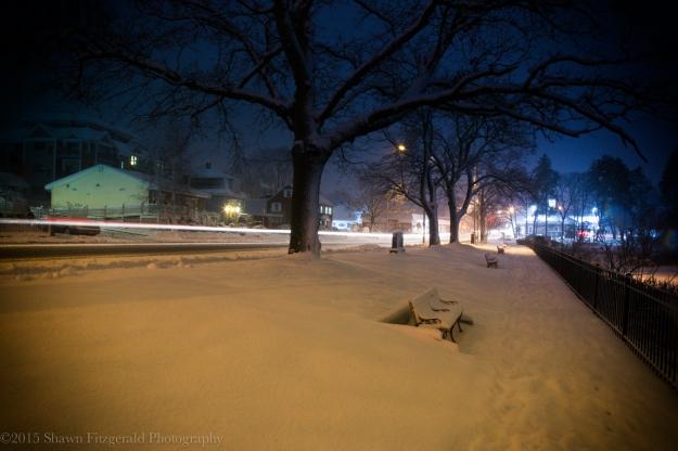 Winter012415-4