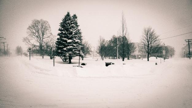 Winter012715-10