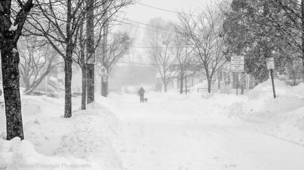 Winter012715-4