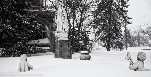 Winter012715-7