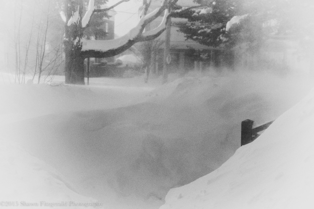 Winter2015-1