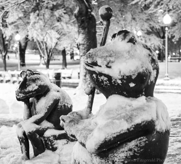 Snowstorm020516-11
