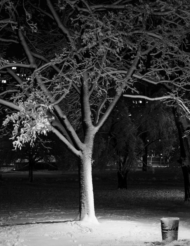 Snowstorm020516-6