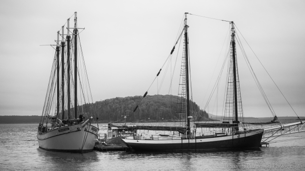 Maine2016BatchFive -3