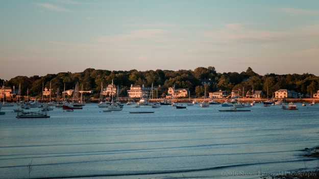 Marblehead_June_2016-12