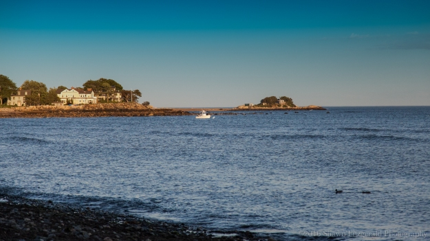 Marblehead_June_2016-3