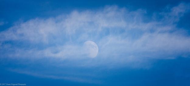 moonshot090117-2
