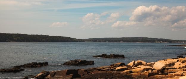 Miscellaenous Feb 2019 (Maine 2016) -1