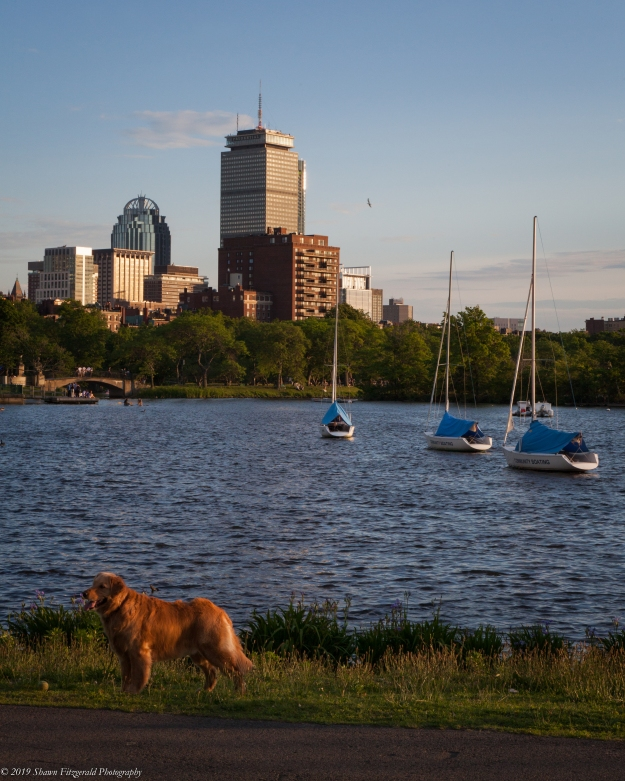 Boston 06.15.19-1