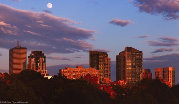 Boston 06.15.19-33