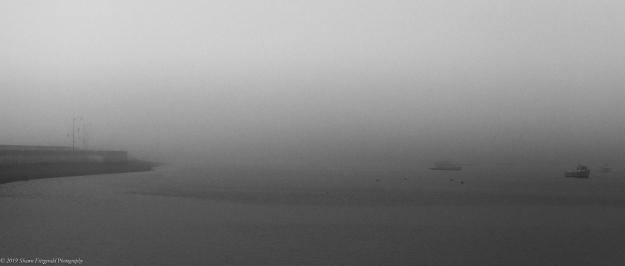Marblehead Fog 6.1.19-10