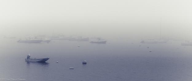Marblehead Fog 6.1.19-3