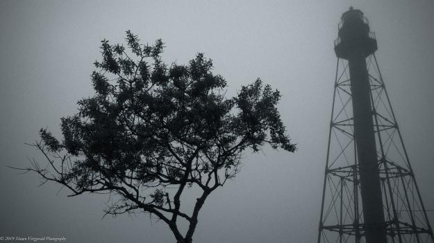 Marblehead Fog 6.1.19-6