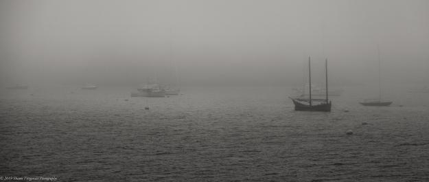 Marblehead Fog 6.1.19-7