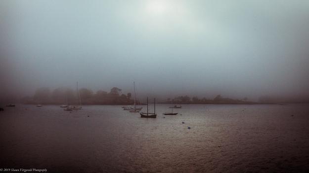 Marblehead Fog 6.1.19-8