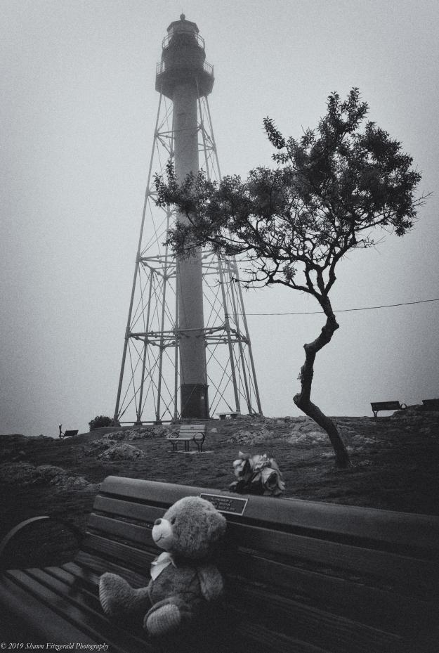 Marblehead Fog 6.1.19-9