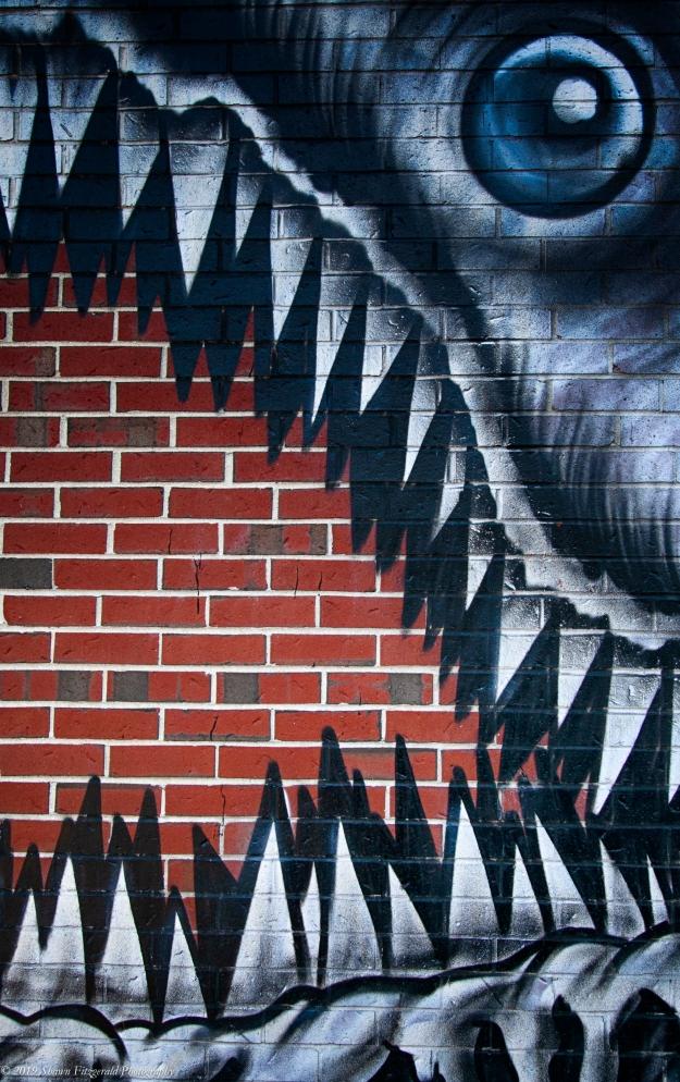 Wall Shark - Portsmouth NH 2013-1