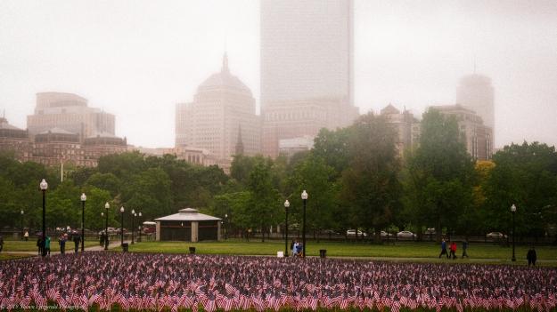 Boston Common May 2013-1