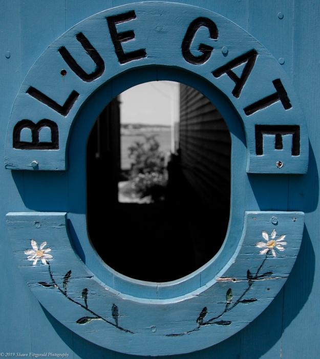Blue Gate 2016-1