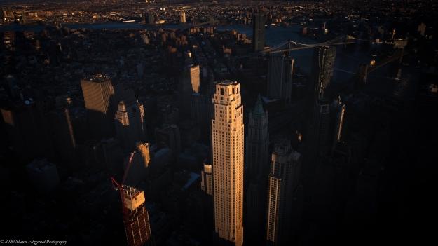 NYC011720WP-4