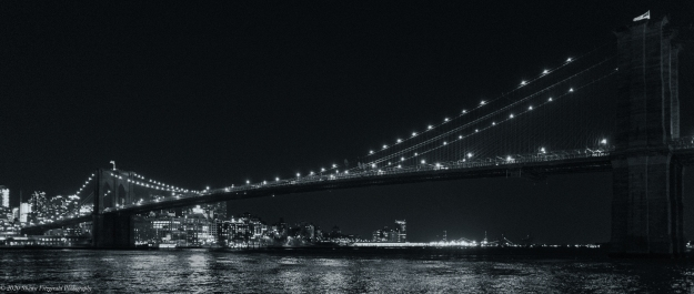 BrooklynBridgeB&W011720-1